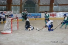Holín vs. Zmijozel, 05.11.2013